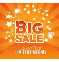 big sale limted time only gold glossy vector image