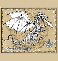 dragon snorting fire and compass vector image