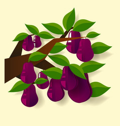 fresh juicy plum colorful half and whole plum vector image