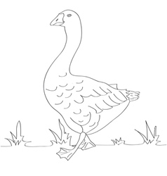 Goose black and white vector image