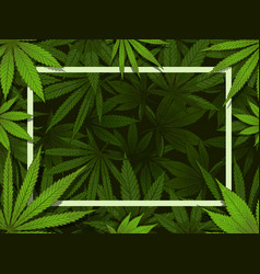 green hemp frame marijuana leafs border medical vector image