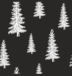 pine tree hand drawn sketch retro vintage vector image
