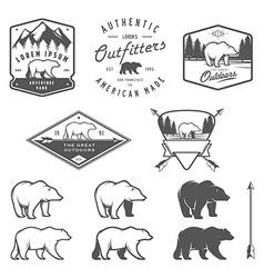 set vintage bear icons emblems and labels vector image