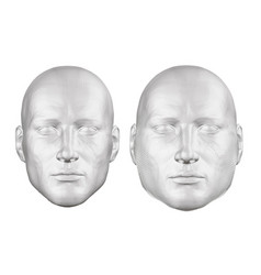 set with a polygonal man head the head of a fat vector image