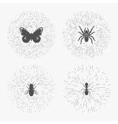 Hipster logo templates with insects vector image
