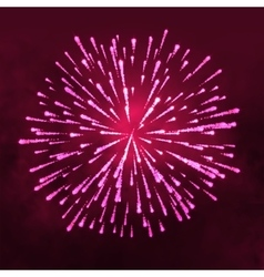 Salute glowing Firework isolated on dark vector image