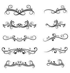 dividers filigree floral decorations isolated on vector image