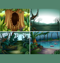 Four forest scenes with trees and river vector