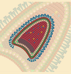 rabies virus background eps 10 vector image