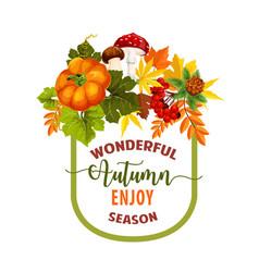 autumn season maple leaf or pumpkin poster vector image vector image