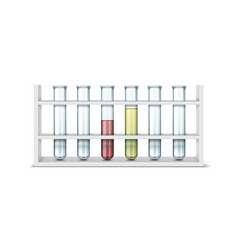 test tube stand vector image vector image