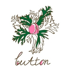 Hand drawn bud anemone Vintage vector image