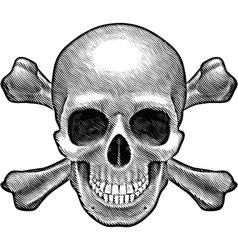 Skull and crossbones figure vector image vector image