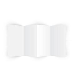 4 fold accordion brochure mockup vector image