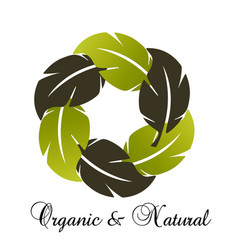 biological environmental group of leafs icon vector image