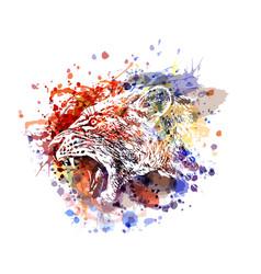 Color a lioness head vector