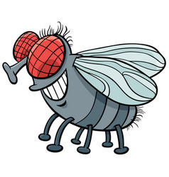 Fly insect character cartoon vector