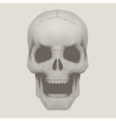 Human skull in vintage halftone style vector image
