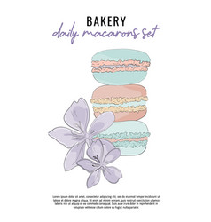 modern with sweet macarons and vector image