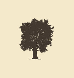oak hand drawn silhouette sketch of vector image
