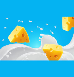 triangle pieces cheese in splashing milk r vector image