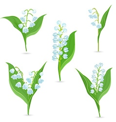 Spring collection of tiny bouquets of Lily Of The vector image