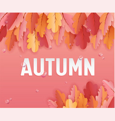 autumn greeting card with beautiful leaves vector image