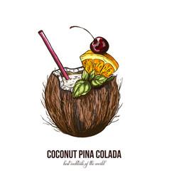 Coconut pina colada vector