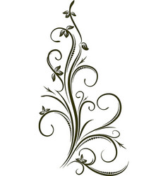 decorative branch vector image