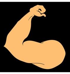 Flex arm bodybuilder with big muscles vector