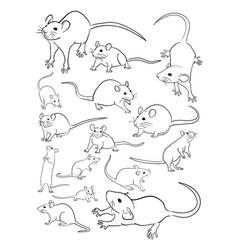 Mice animal line art vector