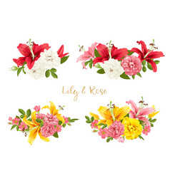 Rose and lily set card vector
