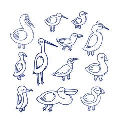 sea bird vector image