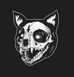 Skull cat cute vector