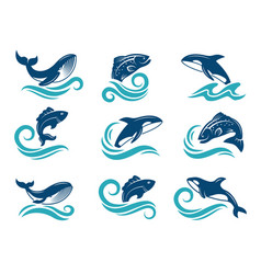 Stylized pictures marine animals sharks vector
