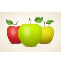 Three apples vector image