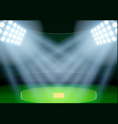Background for posters night cricket stadium in vector image