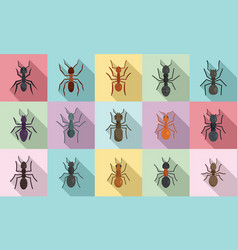Ant icons set flat style vector