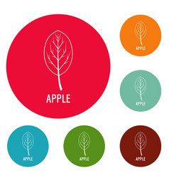 apple leaf icons circle set vector image