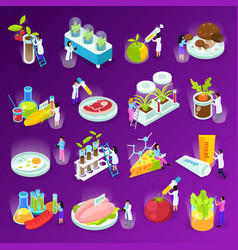 artificial food isometric icons vector image
