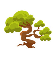 Green tree bonsai miniature traditional japanese vector