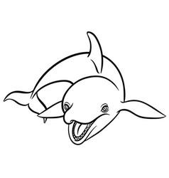 Orca or killer whale vector