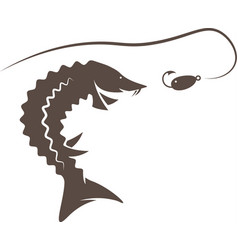 sturgeon fish and lure design template vector image