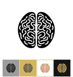 brain icon intelligence sign vector image
