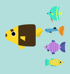 exotic tropical fish race different breed colors vector image