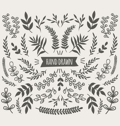 hand drawn decorative floral elements collection vector image