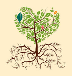 roots tree vector image