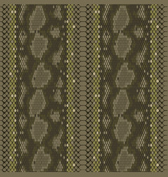 Structure snake skin seamless pattern for vector