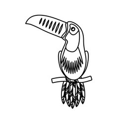 toucan exotic bird icon vector image