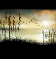 tropical sunrise on sea and sea boat vector image